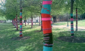 Yarn Bomb the Market Place